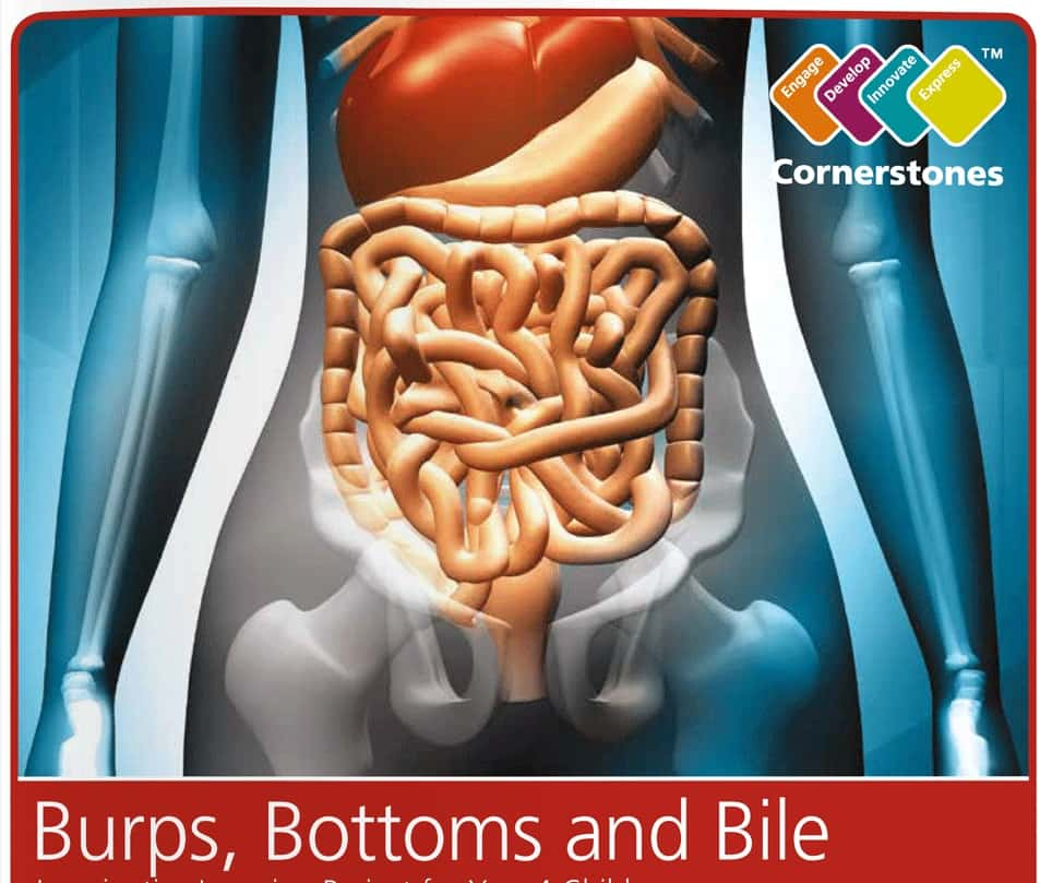 Image result for burps bottoms and bile
